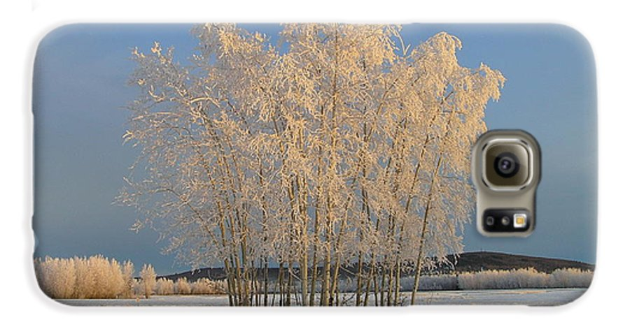 Snow Galaxy S6 Case featuring the photograph Creamer Field by Louise Magno