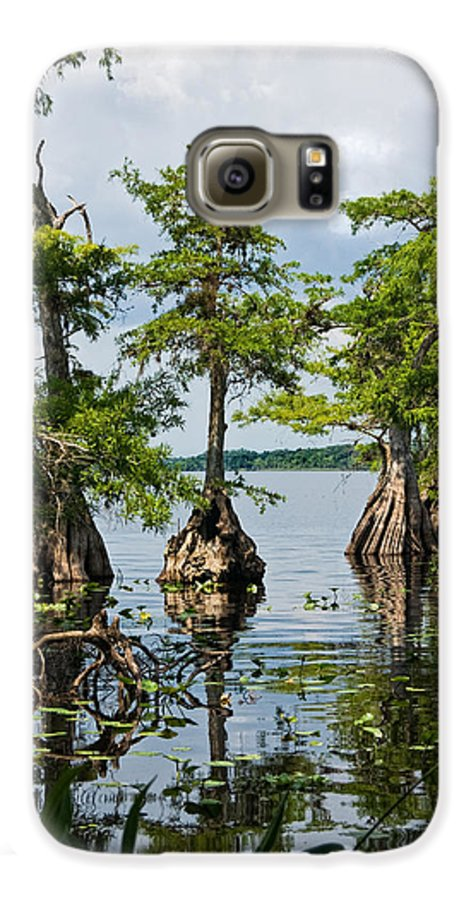 Trees Galaxy S6 Case featuring the photograph Cypress Reflections by Christopher Holmes