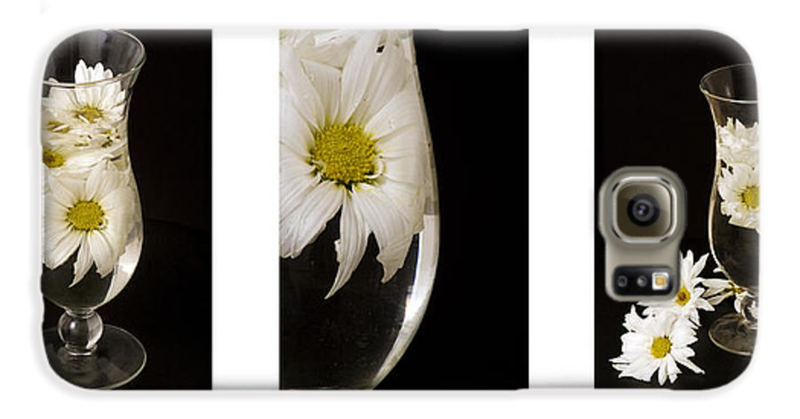 Flowers Galaxy S6 Case featuring the photograph Daisy Triptych by Ayesha Lakes
