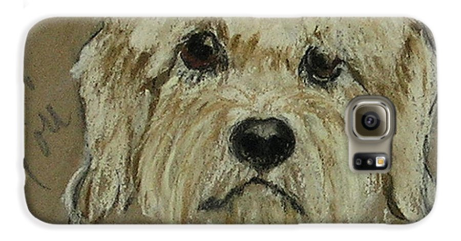Dandie Dinmont Terrier Galaxy S6 Case featuring the drawing Dandie by Cori Solomon