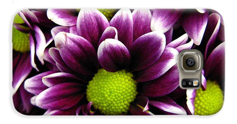 Purple Galaxy S6 Case featuring the photograph Delicate Purple by Rhonda Barrett