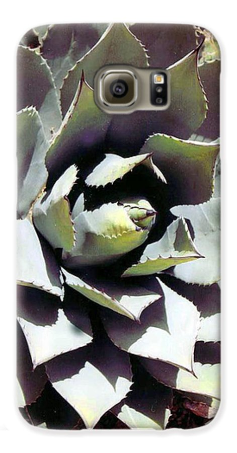 Flower Galaxy S6 Case featuring the photograph Dessert Agave by Margaret Fortunato