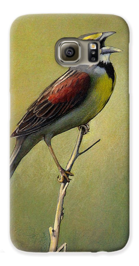 Birds Galaxy S6 Case featuring the drawing Dickcissel Summer Song by Bruce Morrison