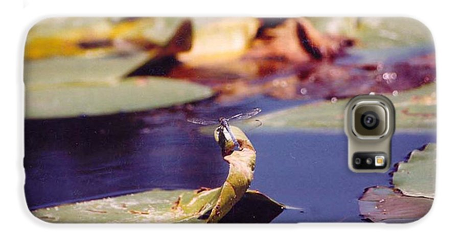 Insect Galaxy S6 Case featuring the photograph Dragon Fly by Margaret Fortunato