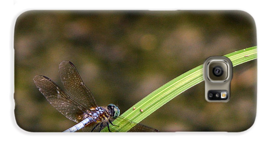 Dragonfly Galaxy S6 Case featuring the photograph Dragonfly by Amanda Barcon