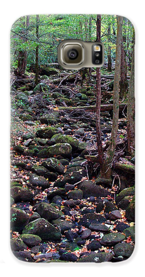 River Galaxy S6 Case featuring the photograph Dry River Bed- Autumn by Nancy Mueller