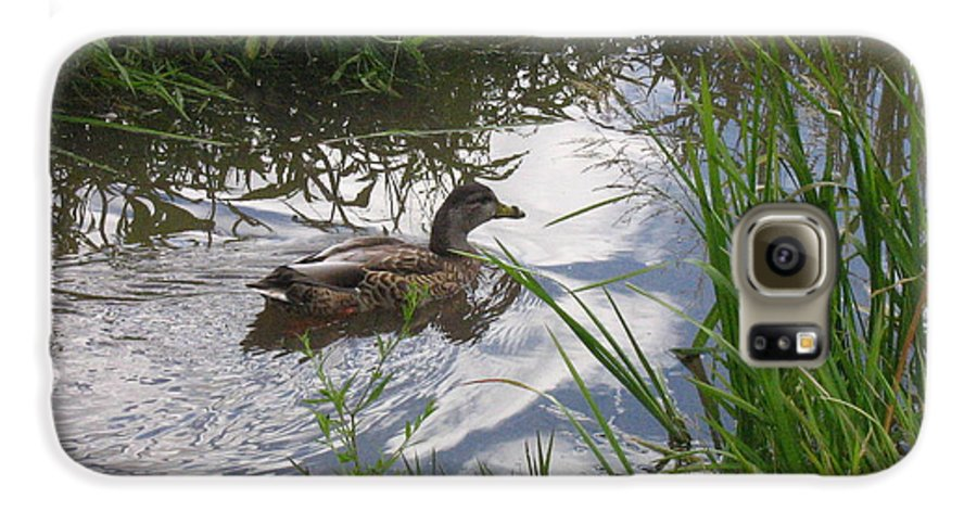 Duck Galaxy S6 Case featuring the photograph Duck Swimming In Stream by Melissa Parks