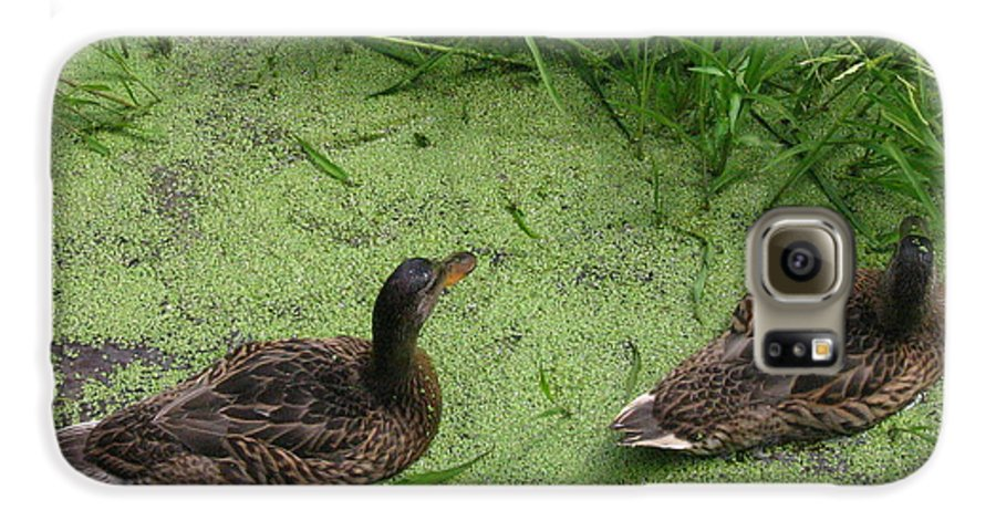 Duck Galaxy S6 Case featuring the photograph Ducks In Pond by Melissa Parks