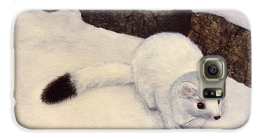 Wildlife Galaxy S6 Case featuring the painting Ermine In Winter by Frank Wilson
