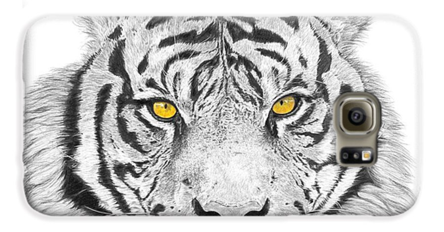 Tiger Galaxy S6 Case featuring the drawing Eyes Of The Tiger by Shawn Stallings