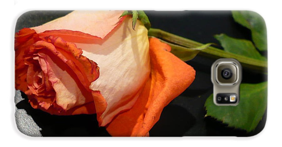 Botanical Galaxy S6 Case featuring the photograph Fading Rose by Florene Welebny