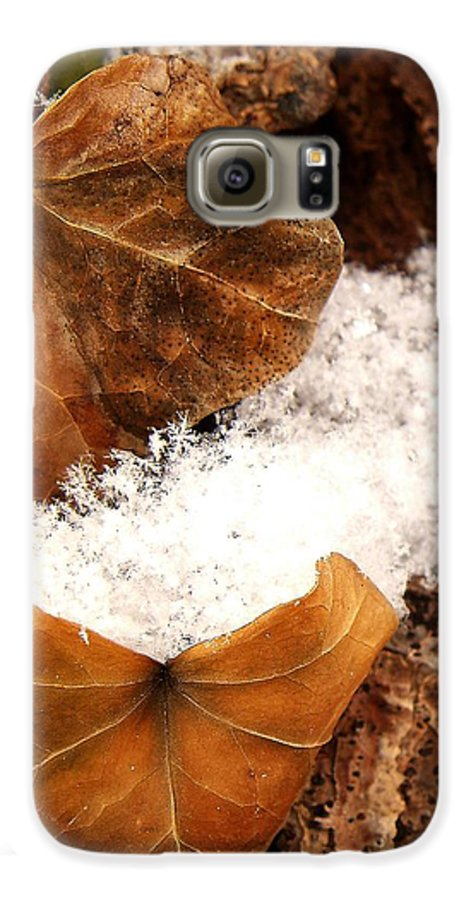 Fall Galaxy S6 Case featuring the photograph Fall And Winter by Gaby Swanson