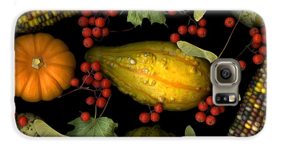 Slanec Galaxy S6 Case featuring the photograph Fall Harvest by Christian Slanec