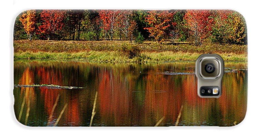 Autumn Galaxy S6 Case featuring the photograph Fall Splendor by Linda Murphy