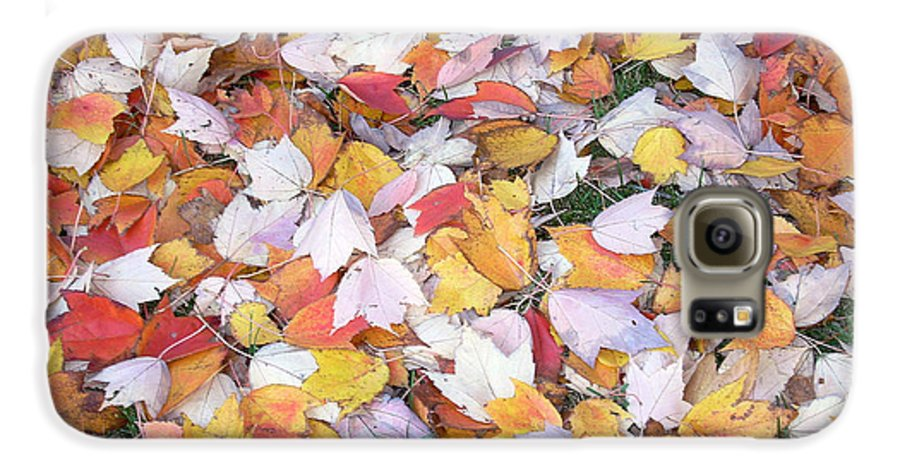 Photography Fall Autum Leaves Galaxy S6 Case featuring the photograph Fallen Fantasy by Karin Dawn Kelshall- Best