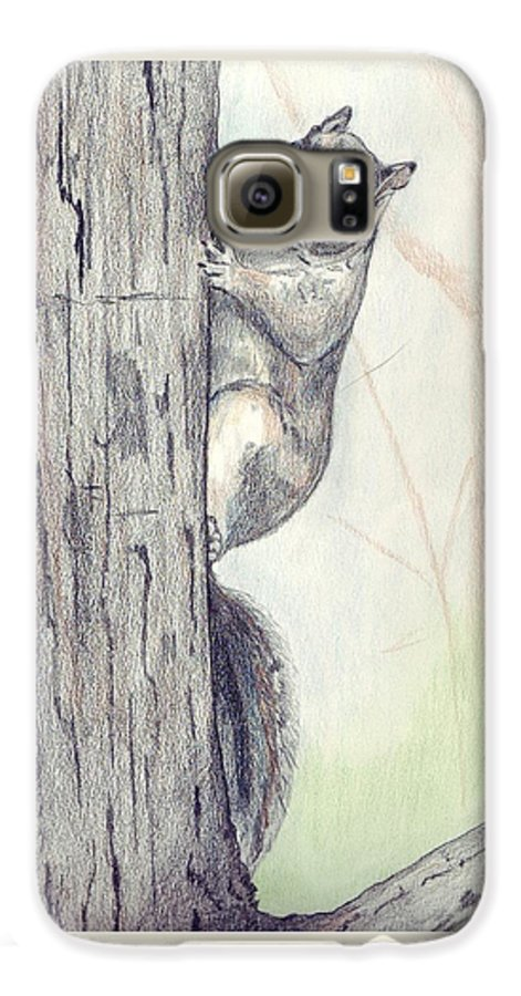 Color Pencil Galaxy S6 Case featuring the drawing Feeder Raider by Debra Sandstrom