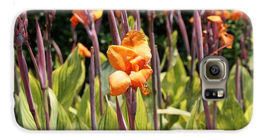 Floral Galaxy S6 Case featuring the photograph Field For Iris by Shelley Jones