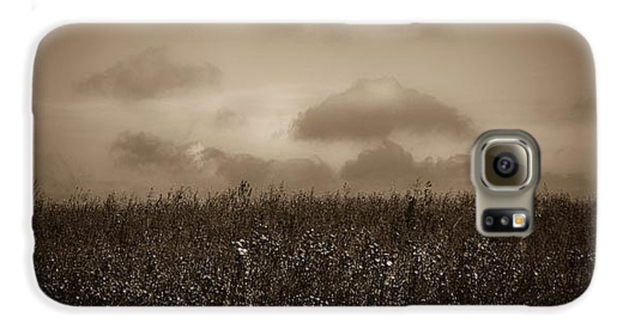 Poland Galaxy S6 Case featuring the photograph Field In Sepia Northern Poland by Michael Ziegler