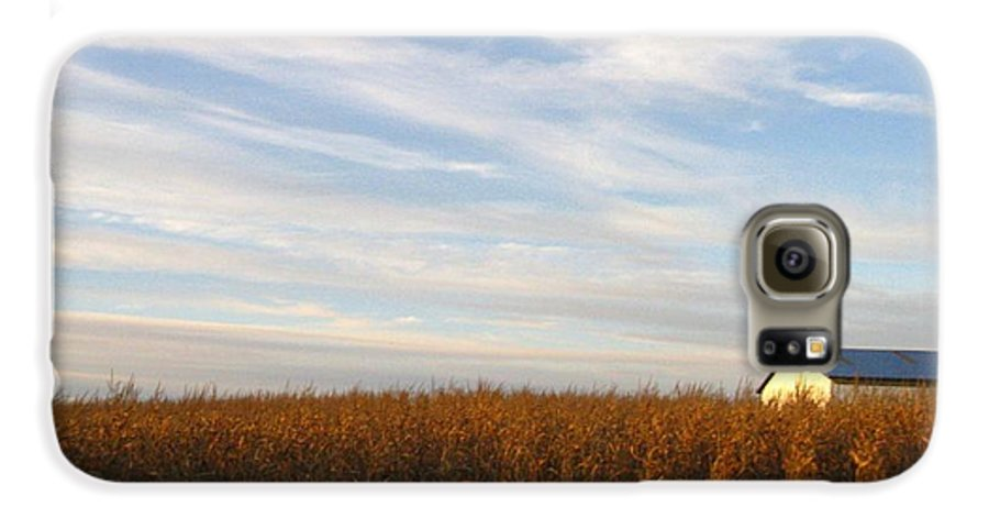Country Galaxy S6 Case featuring the photograph Fields Of Gold by Rhonda Barrett