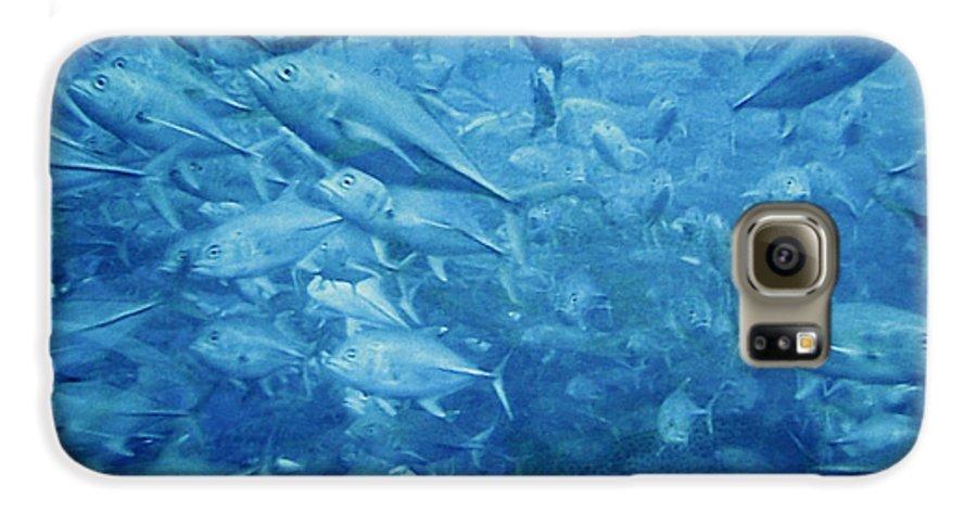 Fish Galaxy S6 Case featuring the photograph Fish Schooling Harmonious Patterns Throughout The Sea by Christine Till