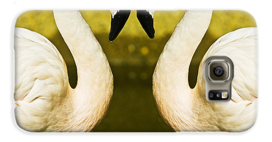 Flamingo Galaxy S6 Case featuring the photograph Flamingo Reflection by Sheila Smart Fine Art Photography