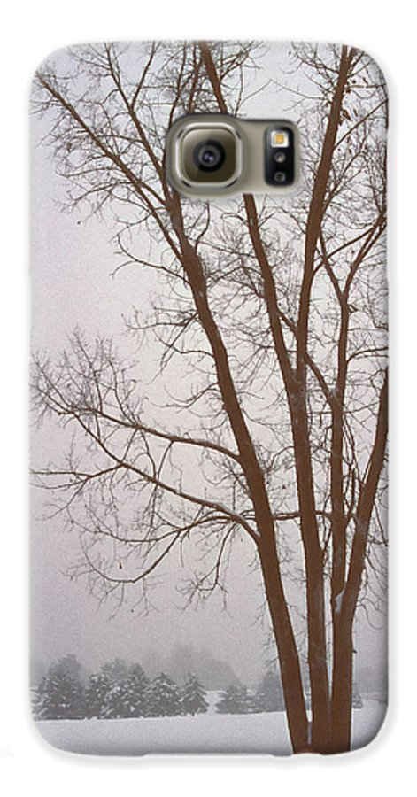 Nature Galaxy S6 Case featuring the photograph Foggy Morning Landscape 13 by Steve Ohlsen