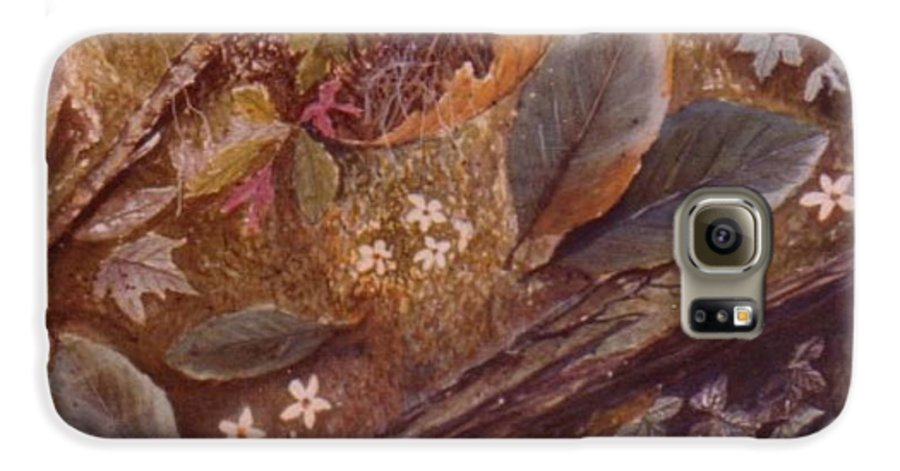 Leaves; Forest; Flowers Galaxy S6 Case featuring the painting Forest Floor by Ben Kiger