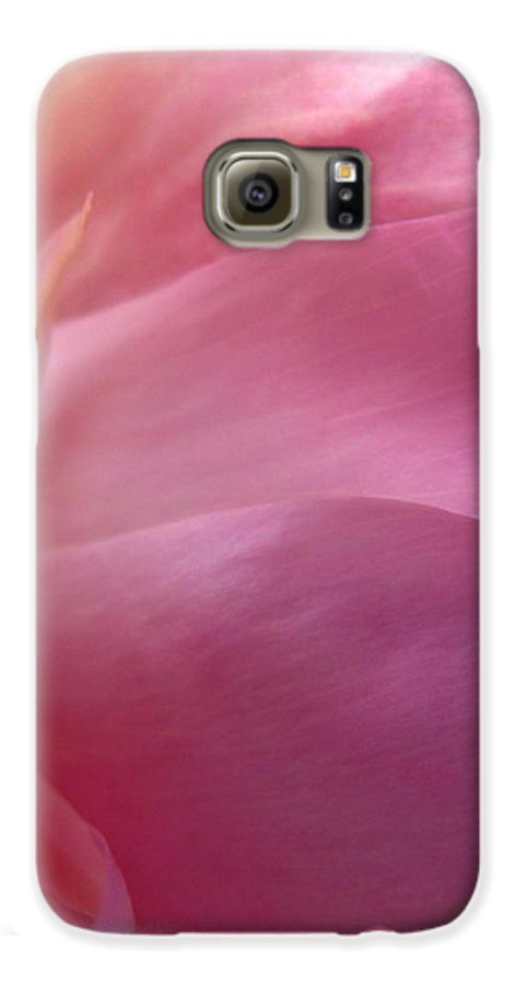 Flower Galaxy S6 Case featuring the photograph Fragment by Rhonda Barrett