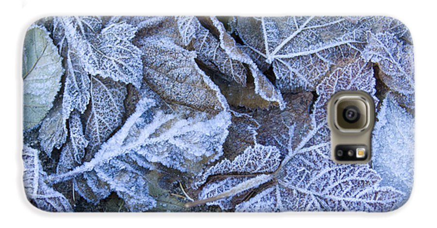 Frost Galaxy S6 Case featuring the photograph Frost by Idaho Scenic Images Linda Lantzy