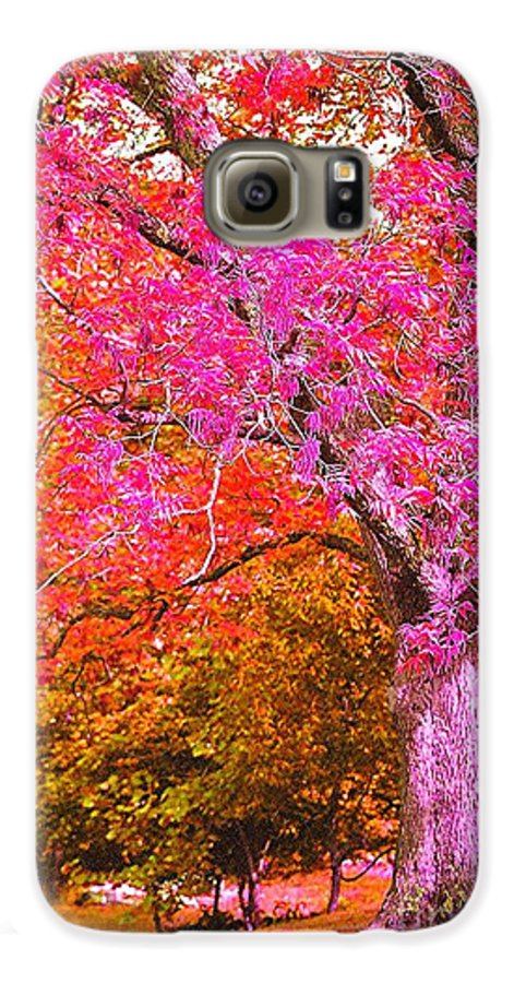Fuschia Galaxy S6 Case featuring the photograph Fuschia Tree by Nadine Rippelmeyer