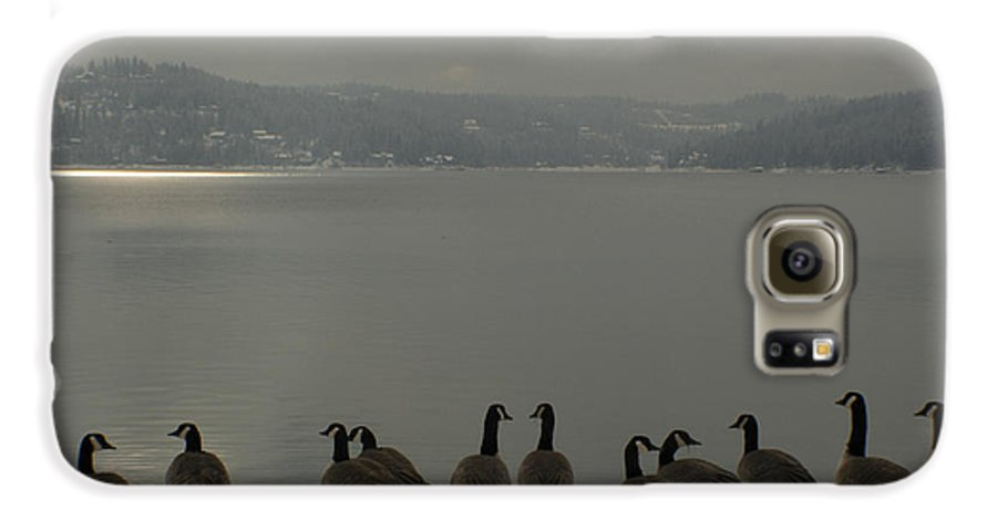Geese Galaxy S6 Case featuring the photograph Geese On The Edge by Idaho Scenic Images Linda Lantzy