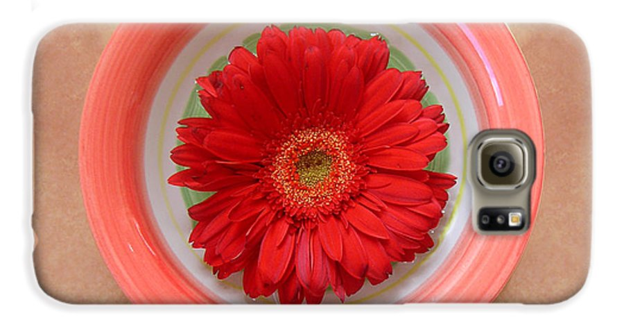 Nature Galaxy S6 Case featuring the photograph Gerbera Daisy - Bowled On Tile by Lucyna A M Green