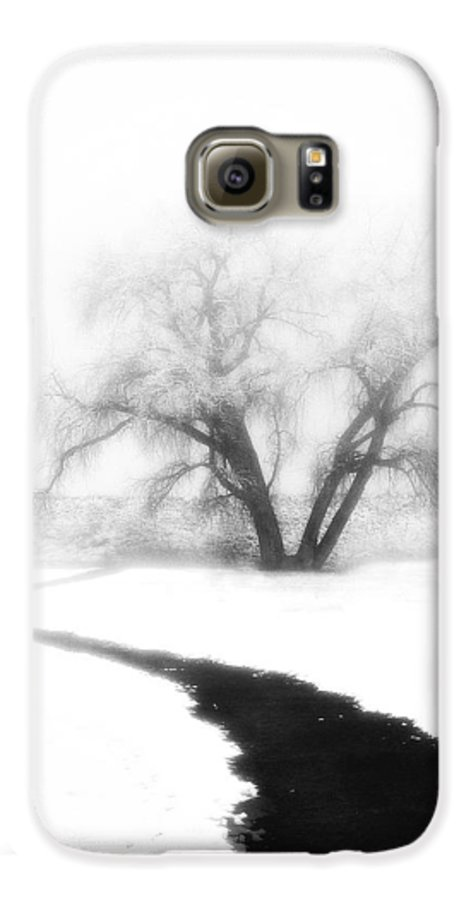Tree Galaxy S6 Case featuring the photograph Getting There by Marilyn Hunt