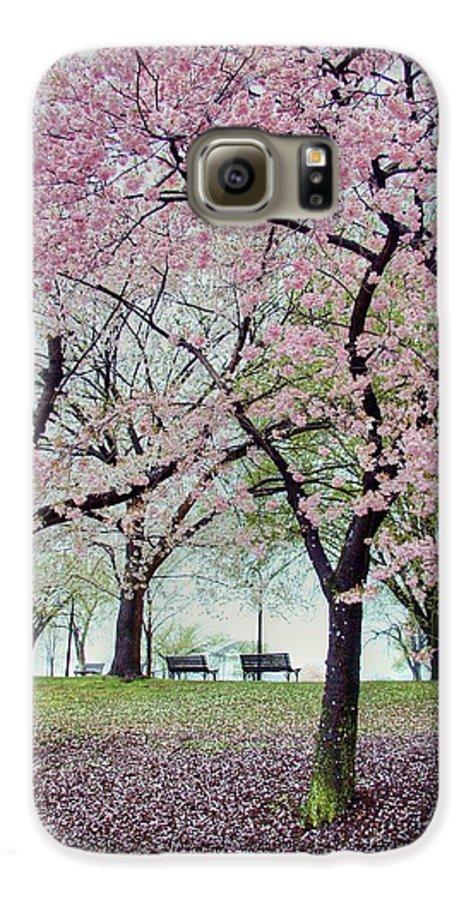 Cherry Blossoms Galaxy S6 Case featuring the photograph Gifts by Mitch Cat