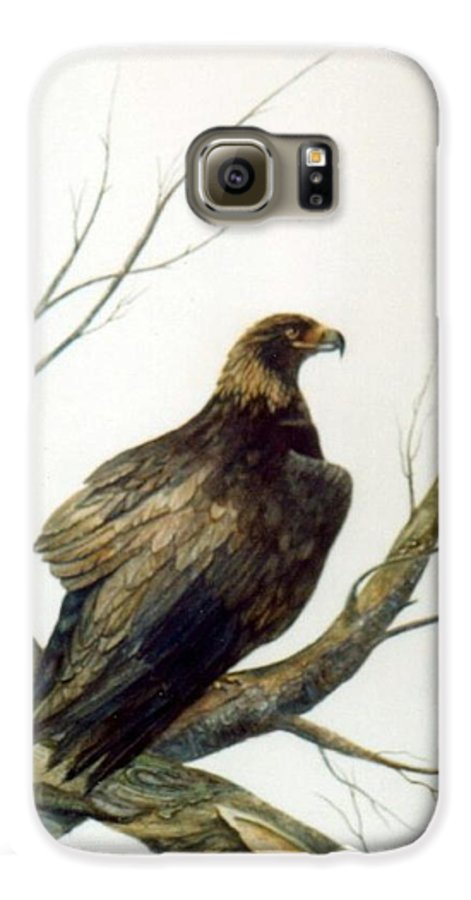Eagle Galaxy S6 Case featuring the painting Golden Eagle by Ben Kiger