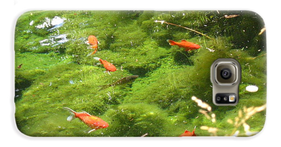 Goldfish Galaxy S6 Case featuring the photograph Goldfish In A Pond by Melissa Parks
