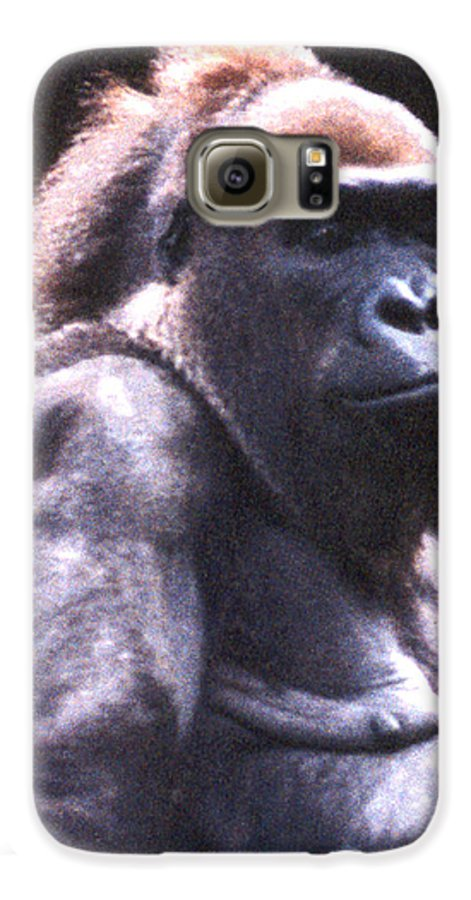 Gorilla Galaxy S6 Case featuring the photograph Gorilla by Steve Karol