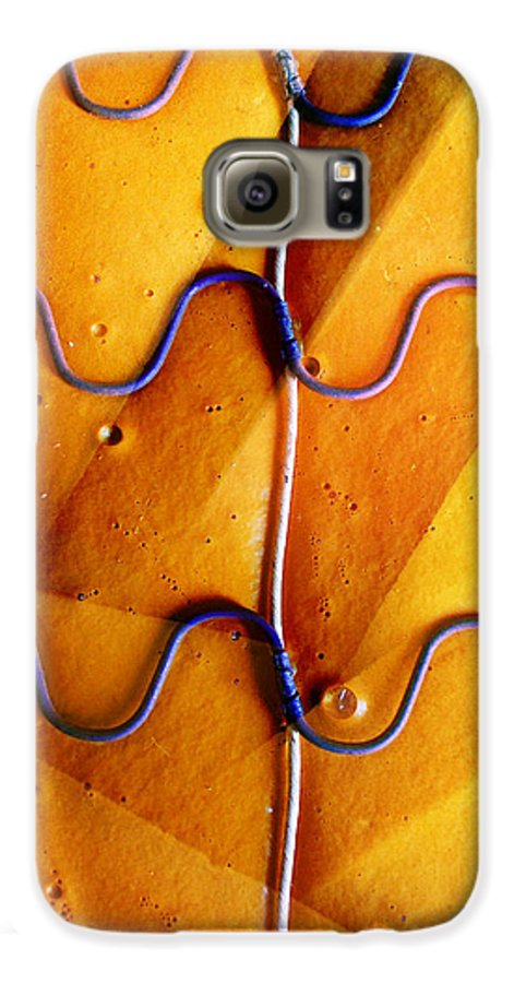 Skip Hunt Galaxy S6 Case featuring the photograph Government Cheese by Skip Hunt