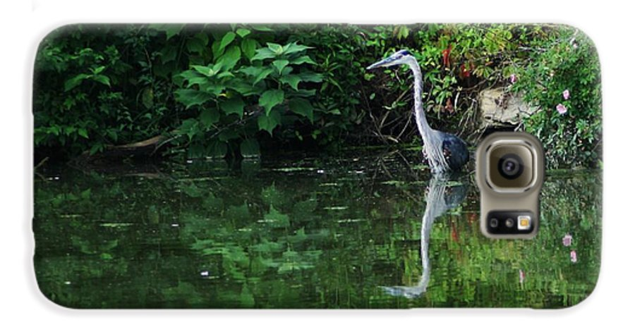 Lanscape Water Bird Crane Heron Blue Green Flowers Great Photograph Galaxy S6 Case featuring the photograph Great Blue Heron Hunting Fish by Dawn Downour