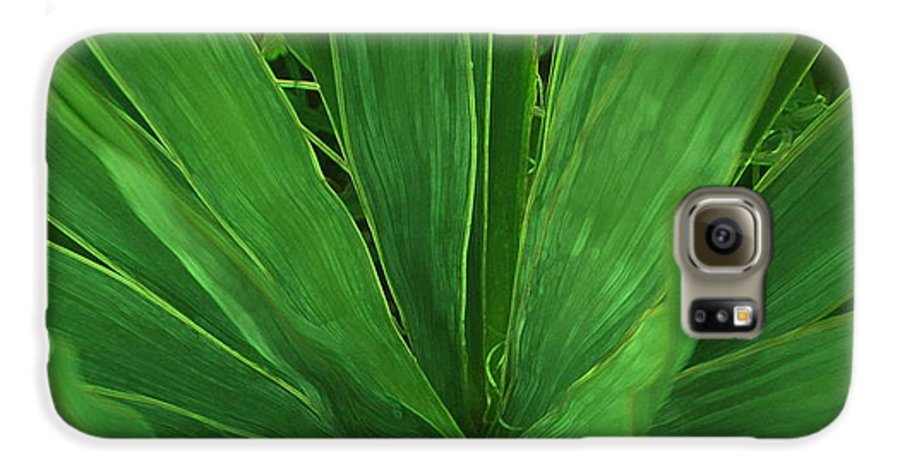 Green Plant Galaxy S6 Case featuring the photograph Green Glow by Linda Sannuti