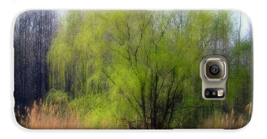 Scenic Art Galaxy S6 Case featuring the photograph Green Tree by Linda Sannuti