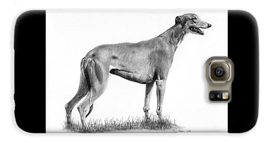 Dog Galaxy S6 Case featuring the drawing Greyhound by Karen Townsend