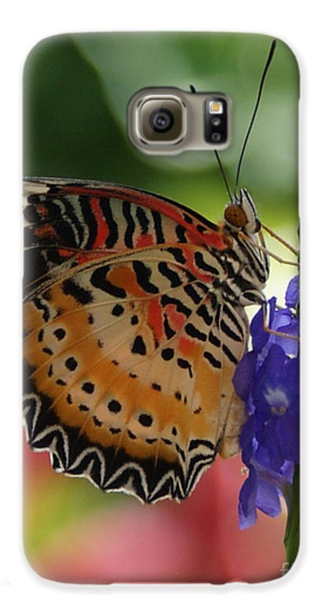 Butterfly Galaxy S6 Case featuring the photograph Hanging On by Shelley Jones