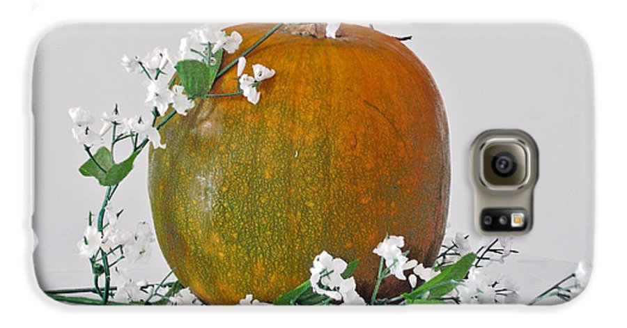 Photography Galaxy S6 Case featuring the photograph Harvest by Shelley Jones
