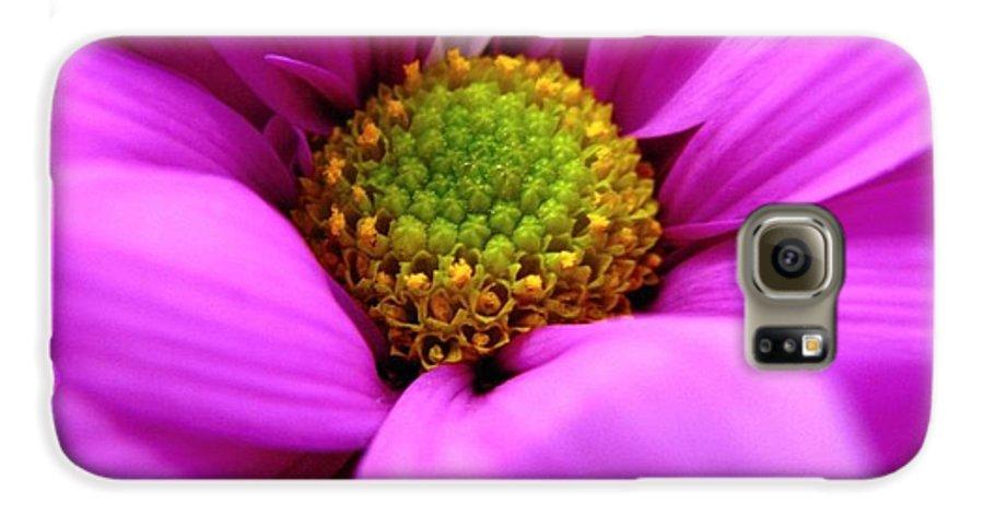 Flower Galaxy S6 Case featuring the photograph Hidden Inside by Rhonda Barrett