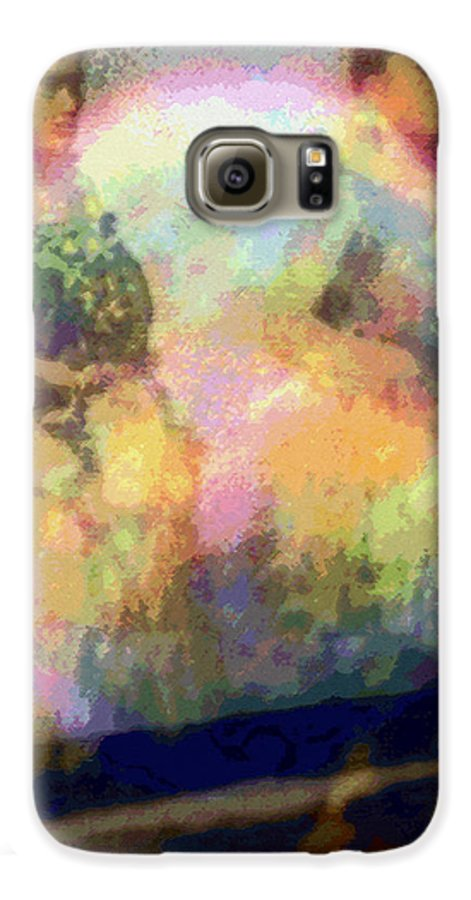 Tropical Interior Design Galaxy S6 Case featuring the photograph Hula Waiona by Kenneth Grzesik