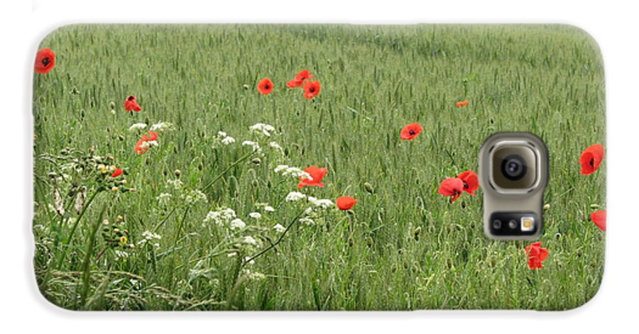 Lest-we Forget Galaxy S6 Case featuring the photograph in Flanders Fields the poppies blow by Mary Ellen Mueller Legault