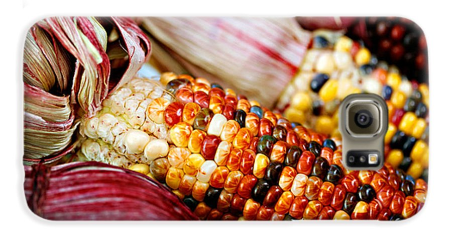 Corn Galaxy S6 Case featuring the photograph Indian Corn by Marilyn Hunt