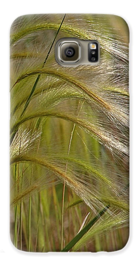 Grass Galaxy S6 Case featuring the photograph Indiangrass Swaying Softly With The Wind by Christine Till