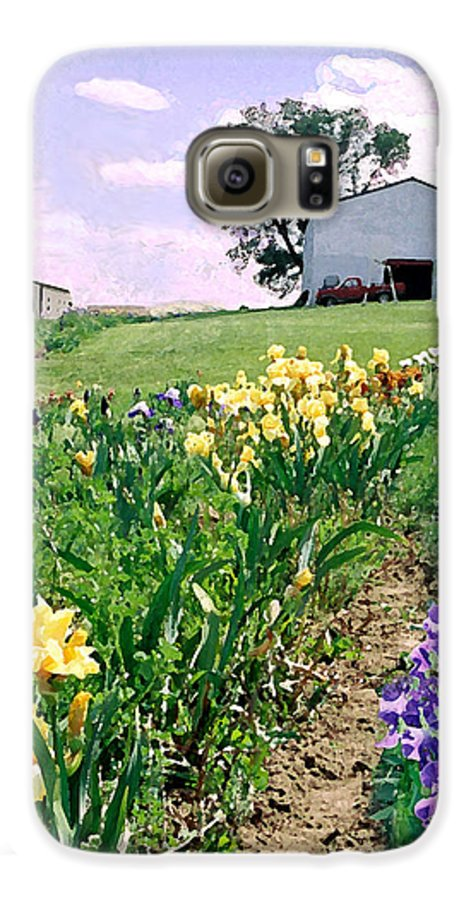 Landscape Painting Galaxy S6 Case featuring the photograph Iris Farm by Steve Karol